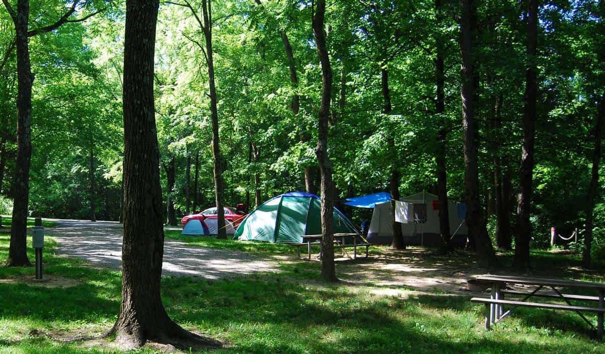 Things Need To Know About Winton Woods Campground